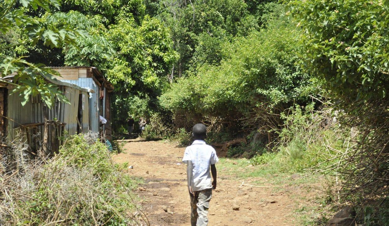 kenya-2042960_1920