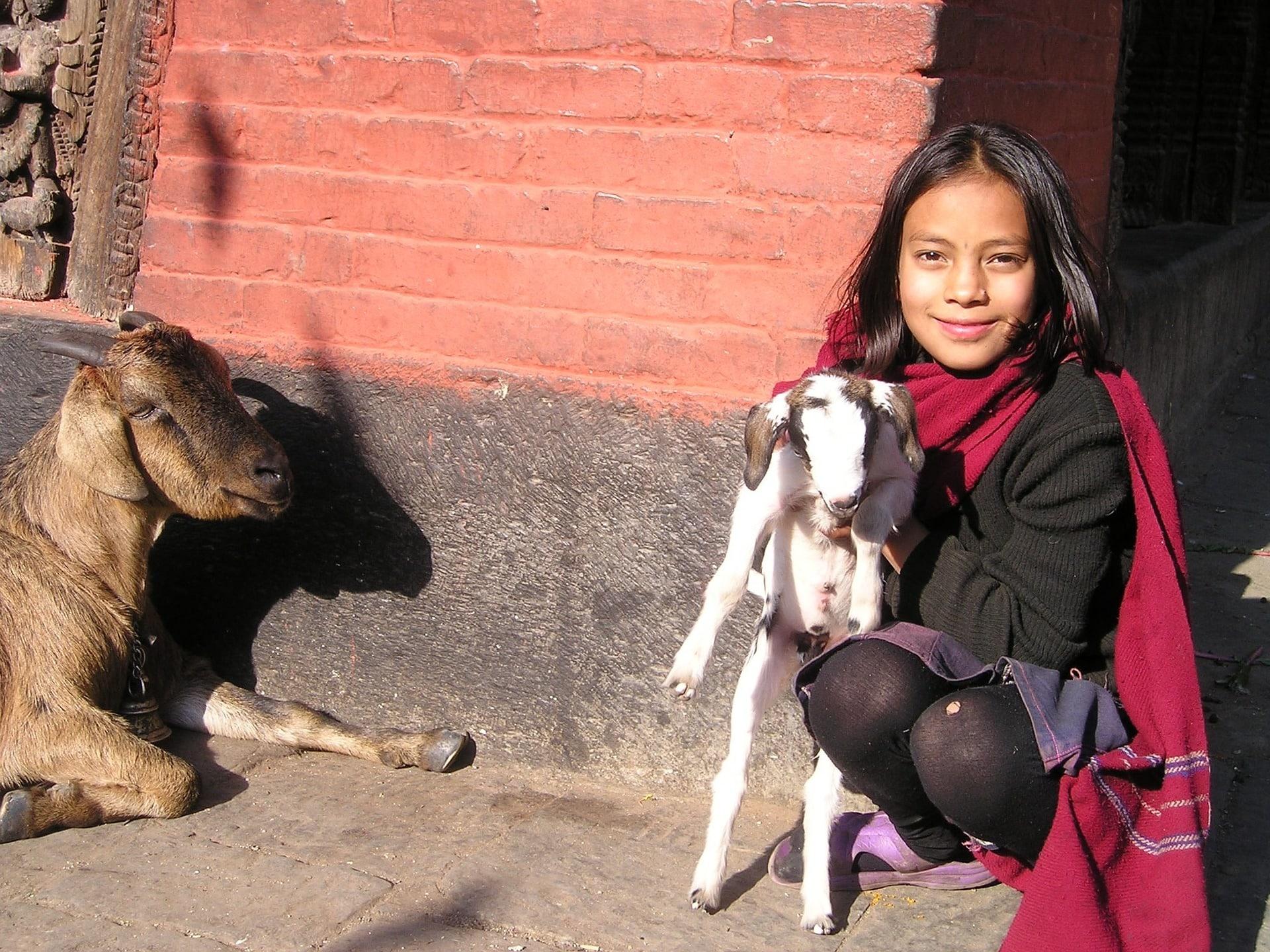 Volontariato internazionale in Nepal per l'insegnamento dell'inglese