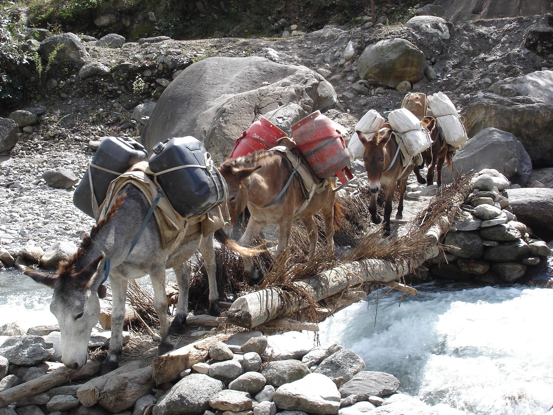 Volontariato internazionale in Nepal per le risorse idriche