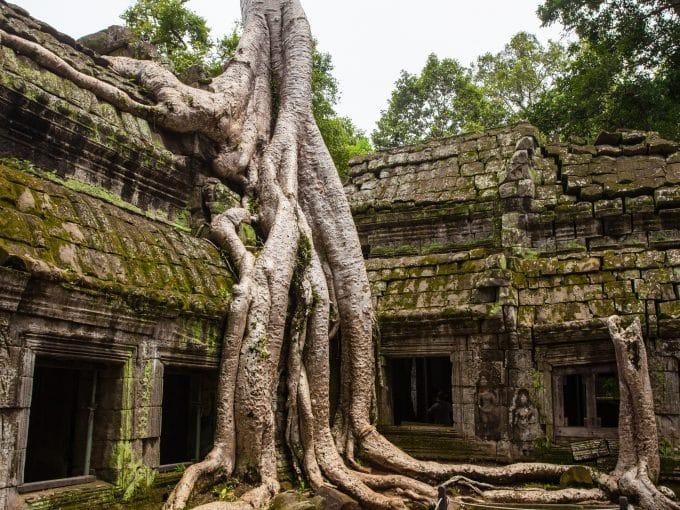 volontariato internazionale cambogia educazione ambientale