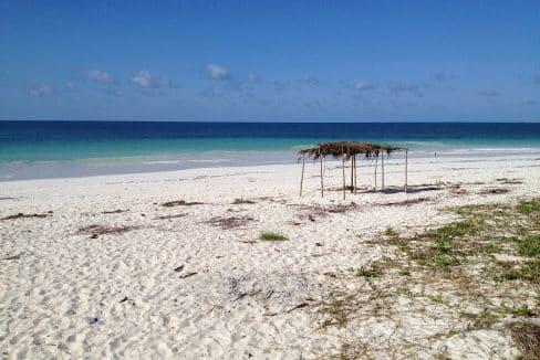 Campo di lavoro in Mozambico attività ambientali