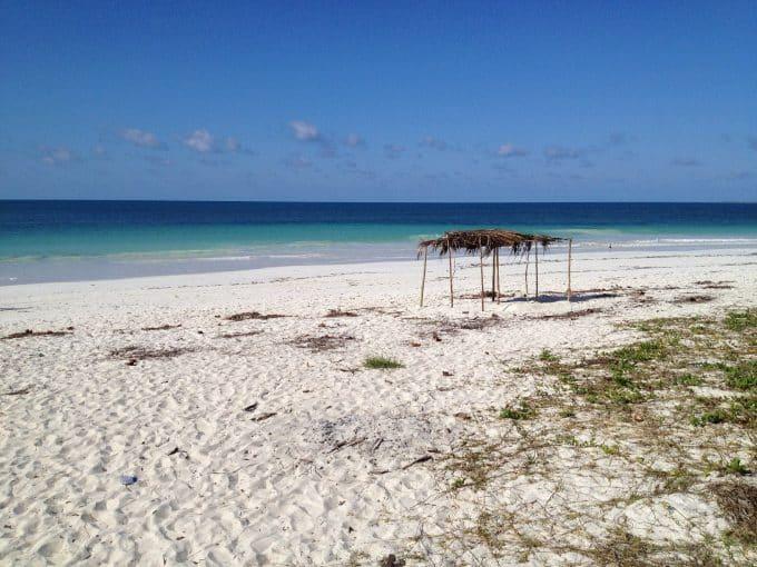 Campo di lavoro in Mozambico per attività ambientali nella zona di Maputo